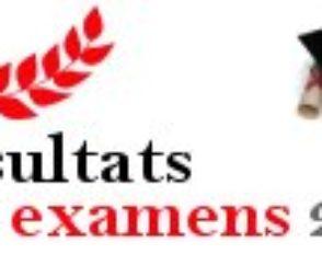 Résultats aux examens 2009