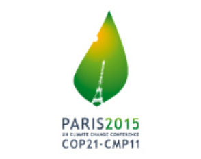 Intervention de Mme Barreau, Chargée de mission Atténuation, Négociations internationales sur le climat (MEDDE)