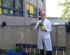 La section hôtelière de Bascan plante son jardin aromatique