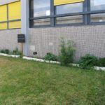 jardin_aromatique.jpg