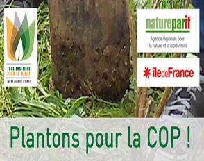 Plantons des arbres pour le climat avec les lycées éco-responsables