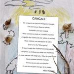 livre_cancale17_pierre.jpg