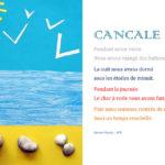 livre_cancale9_steven.jpg