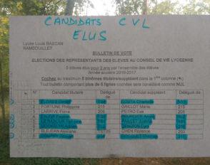 Résultats des élections des délégués CVL