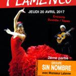 affiche_flamenco.jpg