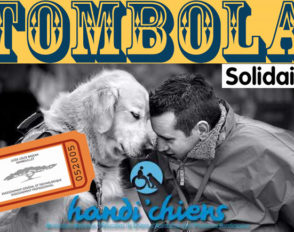 Tombola au profit de l'association Handi'Chiens