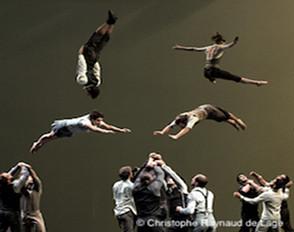 Le programme des sorties spectacles 2018-2019 de l'option Art danse
