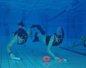 Championnat inter-académique UNSS des activités subaquatiques