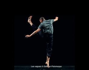 Programme des sorties spectacles de la spécialité danse 2019-2020