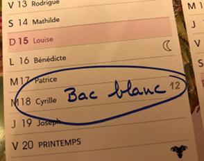 Bac blanc de français : réponse des professeurs de Lettres