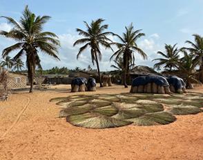 Carnet de voyage au Bénin 2020