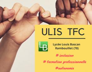 Ouverture d'une ULIS Troubles des Fonctions Cognitives au lycée Bascan
